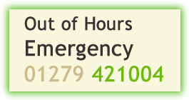 Out of Hours Emergency